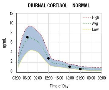Graph showing the normal diurnal rhythm of cortisol in human saliva
